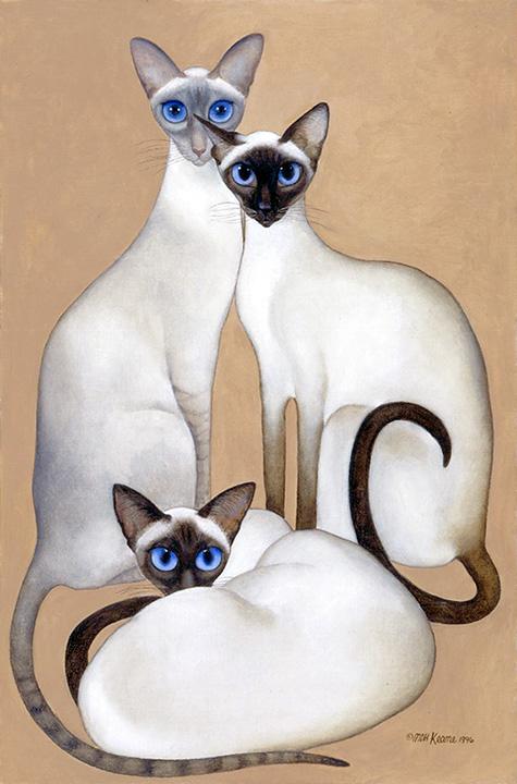 3 Siamese