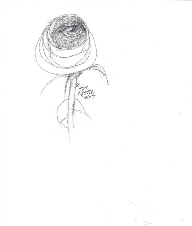 Rose eye