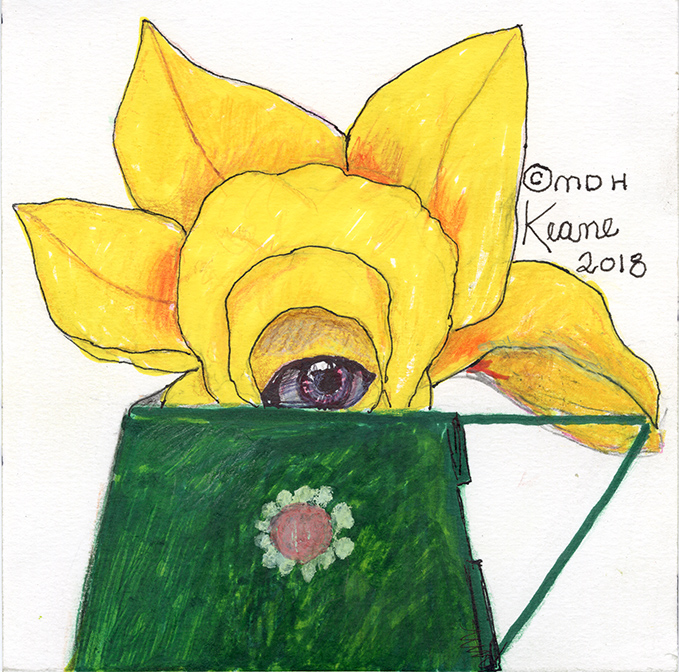 yellow flower in watering can