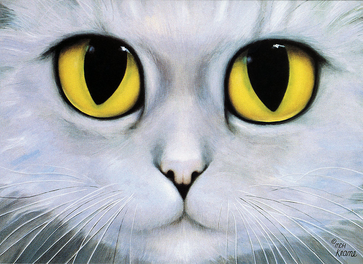 MY CAT SUSHI